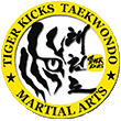 Tiger Kicks Taekwondo Studio in Exton